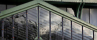 Desert and arid land glasshouse, 1936, Jardin des Plantes, Museum National d'Histoire Naturelle, Paris, France. Detail of the glass pediment of the entrance reflecting trees beneath a stormy sky.