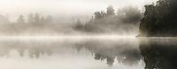 Native forest in morning fog reflecting in Lake Matheson at sunrise, Westland Tai Poutini National Park, UNESCO World Heritage Area, West Coast, New Zealand, NZ
