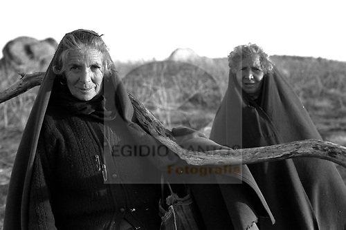 Old ladies in Mazes, Lamego