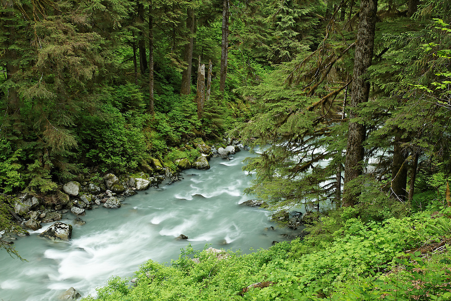 Boulder River running through forested canyon, Boulder River Wilderness, Mount Baker-Snoqualmie National Forest, Washington, USA