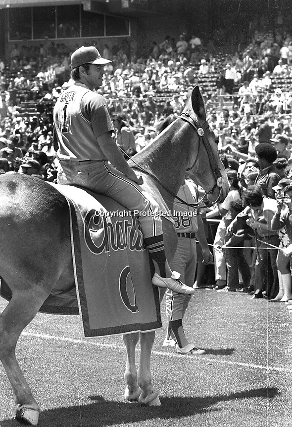 """Oakland Athletics 2nd baseman Dick Green riding Charlie O """"The Mule""""...during pre-game at the Oakland Coliseum....(photo 1971/Ron Riesterer)"""