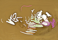 Abstract pond in summer. In the center fluid shapes in light green and pink tones colors on brown water backgrund. Colors of the nature. Abstract non objective photography. Fine art photography.Modern art.