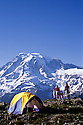 CC96080-60...WASHINGTON - Campsite in Mount Rainier National Park. (MR# K1-K3-S1-S12)