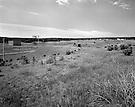 Wide shot of field showing earth bermed bunkers