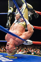 A Luchador (fighter) finds himself in an uncomfortable position. Lucha Libre is a style of wrestling started in Mexico in 1933. The name means Free Fight, and matches tend to be focussed on spectacle and theatre with fans cheering for their favourite characters, who wear masks while jumping from the ropes, flipping opponents, and occasionally crashing into the crowd..&copy;Jacob Silberberg/Panos/Felix Features.