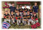 2015 Burlington American Cardinals