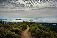 Rock Spring Trail