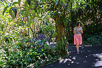 A woman using her cell phone walks through Hawai'i Tropical Botanical Gardens in Onomea, just north of Hilo, Big Island of Hawaiʻi.