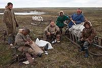 Bovanenkovo ,Yamal Peninsula, Russia, 09/07/2010..Tthe Nenets, local nomadic reindeer herders, at their camp before leaving on sledges heading north to near the northern Russian coast.