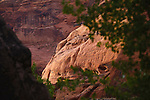 Sandstone cliffs and rock walls along the Paria River Canyon in Arizona