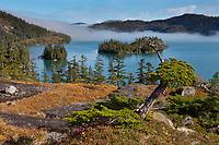 Deep Water Bay, Western Prince William Sound, Chugach National Forest, Kenai mountains, Alaska.