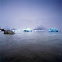 Icebergs at the Antarctic Peninsula, Antarctica