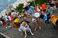 Dogs, dressed in fancy costumes, take part in the Blocao pet carnival show at Copacabana beach in Rio de Janeiro, Brazil, 12 February 2012.