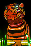 Sumatran Tiger lantern during the Vivid 2016 Sydney Festival at Taronga Zoo, Sydney Australia.