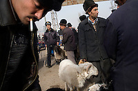 Uighur men walk around outside the Kashgar Sunday Animal Market outside Kashgar, Xinjiang, China. Throughout history until the late 1990s, the Kashgar animal market occurred throughout the city, but has since been moved to a special location outside the city.