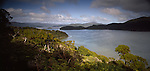Looking out over Paterson Inlet. Stewart Island (Rakiura) National Park. New Zealand.