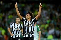 Copa Conmebol Libertadores Bridgestone 2017
