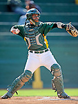 30 April 2008: University of Vermont Catamounts' catcher Jeff Nolet, a Junior from Concord, MA, in action against the University of Massachusetts Minutemen at Historic Centennial Field in Burlington, Vermont. The Catamounts recorded a season-high 19 hits as they defeated the Minutemen 17-4 in their last NCAA non-conference game of the year...Mandatory Photo Credit: Ed Wolfstein Photo