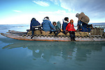 Images from assignment work in Igloolik, Eastern Canadian Artic, in 1985-1986.  Igloolik is an Inuit community with traditional hunting and fishing and a strong sense of self government. On the edge of the pack ice, a family prepares to pull their komatik to summer camp.