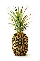 Single ripe pineapple