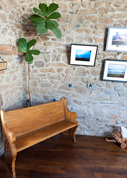 A bench seat and plant in the corner of the wine bar at Hillsborough Vineyards.