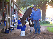 Rachel Alexandra gate schools, walks the barn, and gets a bath two days before she takes on males in the Woodward <br /> Stakes at Saratoga.