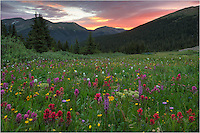 It is an early morning to photography the wildflower landscape of Colorado's Butler Gulch. I left my house in Winter Park about 3:45am on this morning in hopes the sunrise would be good. After a short 30 minute drive over Berthoud Pass, I parked and started the 2 mile, 1000 vertical feet hike up Butler Gulch. I was a little concerned because of the thick clouds, but the skies lit up for longer than usual - almost 10 minutes. This Colorado wildflower image was one of my favorites of the morning, along with a panorama I took a bit later, as well.