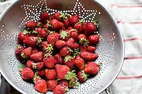 Fresh Oregon Strawberries