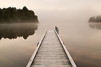 Lake Mapourika Jetty near Franz Josef Glacier village - Westland National Park, West Coast