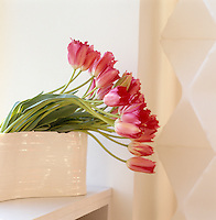 Pink tulips in a white ceramic vase stand on a window ledge in the living room