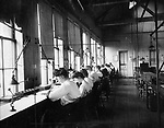 Workers at the New England Watch Factory in Waterbury, 1905.