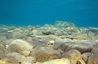 Underwater Scene-Rocky Lake Bottom<br /> <br /> ENGBRETSON UNDERWATER PHOTO