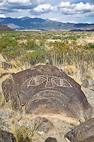 Petroglyphs -Three Rivers Petroglyph Park photos