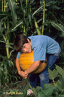 Garden Preparation, Harvest