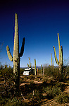 RV life: RV life at Saguaro National Monument, AZ  .Photo Copyright: Lee Foster, lee@fostertravel.com, www.fostertravel.com,  (510) 549-2202.Image rvlife206