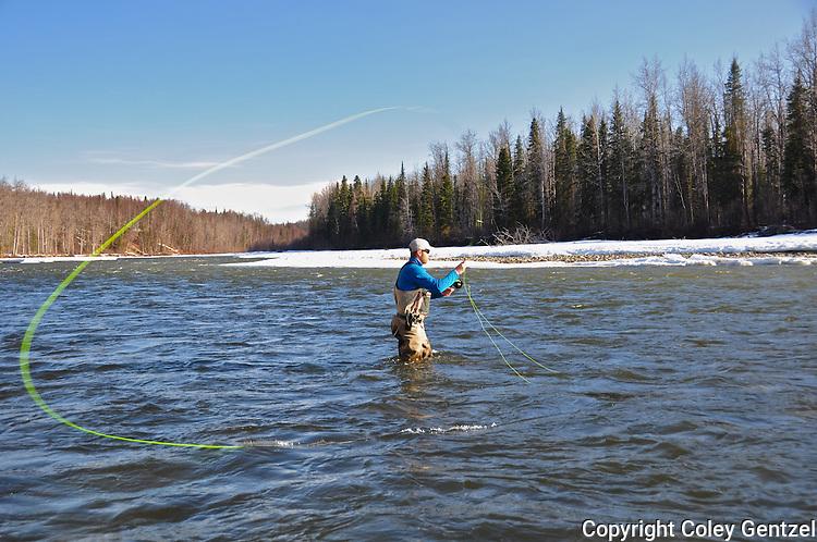 Fly Fisherman on the Talkeetna River