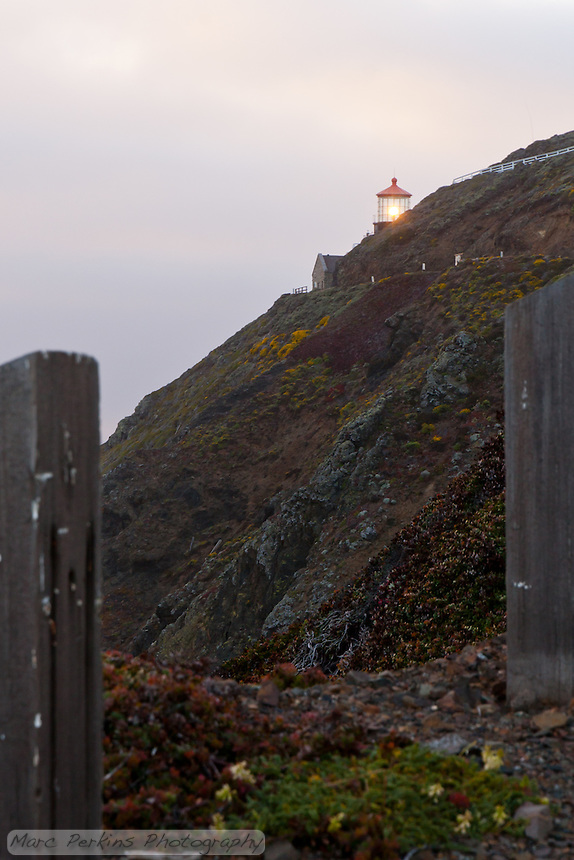 Point Sur Light Station's lighthouse peeking over the top of the hillside it's built on.  This is seen from the road that climbs the hill to reach the lighthouse.  The day was incredibly windy, and the only barrier on the steep hillside is the vertical wooden beams you can see in the picture.  The hillside was covered in blooms, making it beautiful.