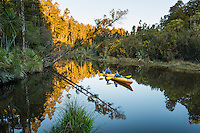 Kayaking in Okarito Lagoon, Westland Tai Poutini National Park, West Coast, UNESCO World Heritage Area, South Westland, New Zealand, NZ