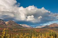 Autumn colors on the tundra and taiga along the Denali Highway, Alaska range mountains, interior, Alaska.