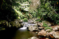 Australia - Lamington National Park