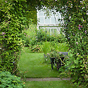 Upton Grey, greenhouse in the old kitchen garden, mid July.