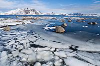 Snow floats in water of small bay, near Stamsund, Vestvågøy, Lofoten Islands, Norway