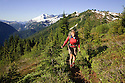 WA04600-00...WASHINGTON - Hiker ascending towards the lookout on the Copper Mountain Trail in North Cascades National Park.