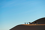 Nomads with dromedaries in the Sahara desert of Morocco.