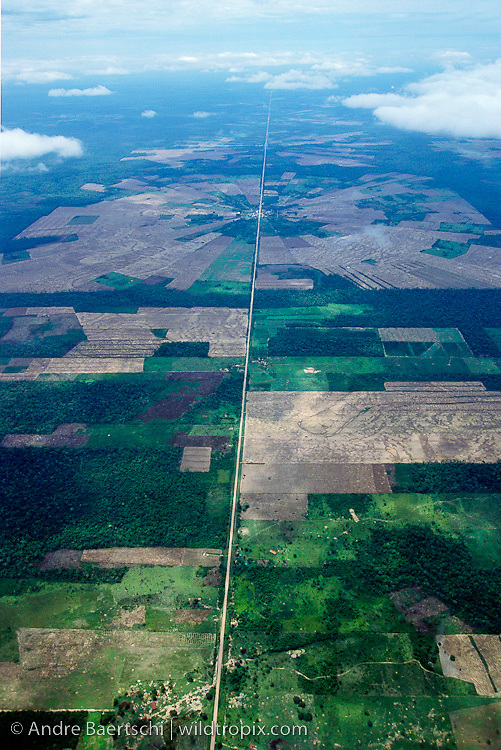 Cleared tropical forest for agriculture, mainly soy bean production, Santa Cruz, Bolivia.