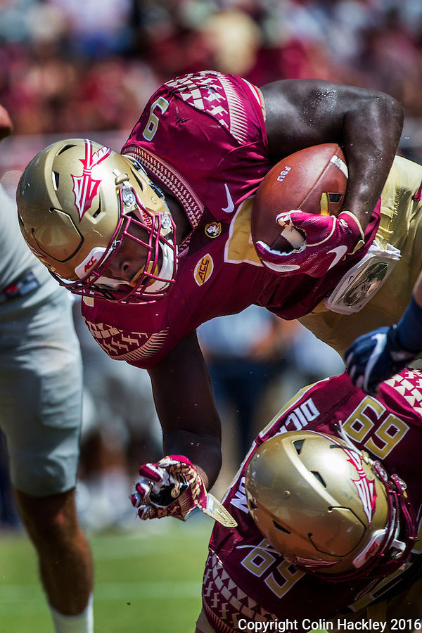 TALLAHASSEE, FLA 9/10/16-Florida State's Jacques Patrick dives over Landon Dickerson for the Seminole's fifth touchdown against Charleston Southern during second quarter action Saturday at Doak Campbell Stadium in Tallahassee. <br /> COLIN HACKLEY PHOTO
