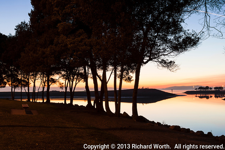 Trees line the shoreline at San Leandro Marina Park giving silent witness to one day's sunset.