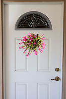 A Thanksgiving cactus, in bloom, photoshopped as a wreath on a front door.