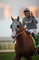 HALLANDALE BEACH, FL - JAN 28: California Chrome and victor Espinoza return after The Pegasus World Cup Invitational at Gulfstream Park Race Course on January 28, 2017 in Hallandale Beach, Florida. (Photo by Alex Evers/Eclipse Sportswire/Getty Images)