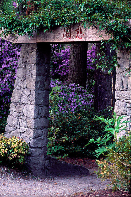 Entrance to Japanese Meditation Garden of rhododendrons, Douglas Fir and Cedar trees, Van Dusen Botanical Garden, Vancouver, BC.